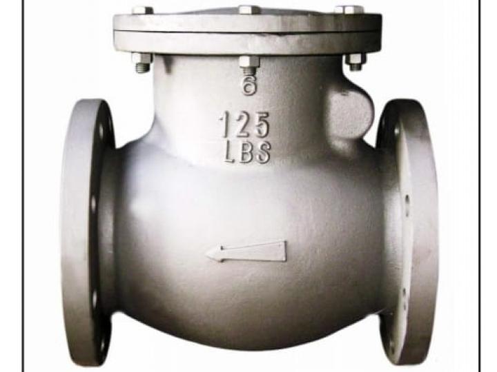 Válvula de retenção  Ferro Fundido ANSI 125LBS
